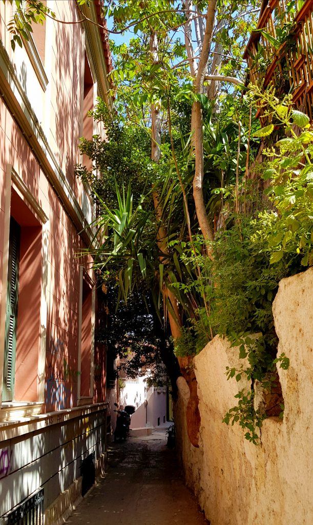 Atena verde Green Athens